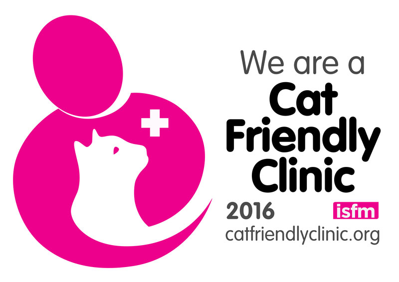 Cat Friendly Clinic Advert