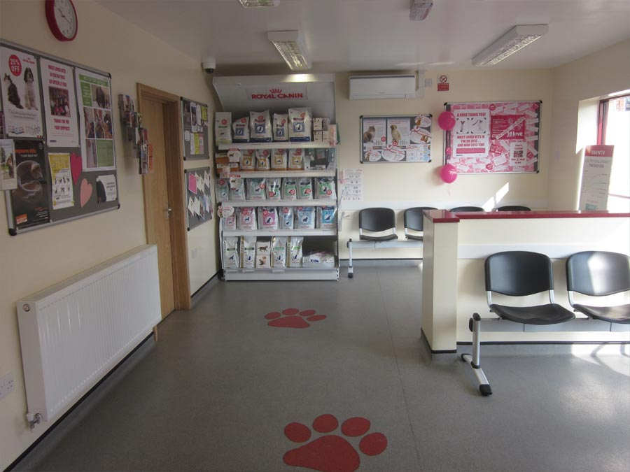 387 Vets Vet In Cannock Walsall Great Wyrley About