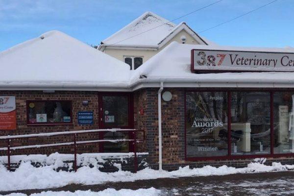 Christmas City Vet.387 Vets Vet In Cannock Walsall Great Wyrley Blog